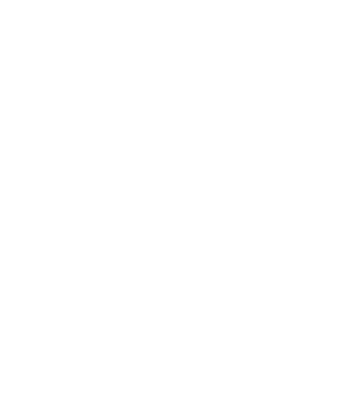 """Головка торцевая TORX 1/2"""" E10 43510 JTC"""
